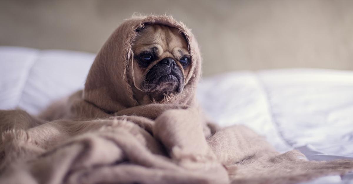A februári rossz alvás hátterében elsősorban a sötét nappalok, a hosszú éjszakák, valamint a fűtött hálószobák állnak.